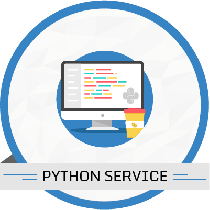 10 Hours Python Services