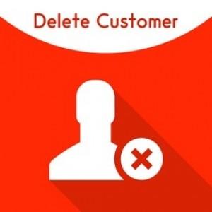 Magento 2 Delete customer