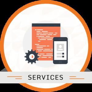 Customization Services