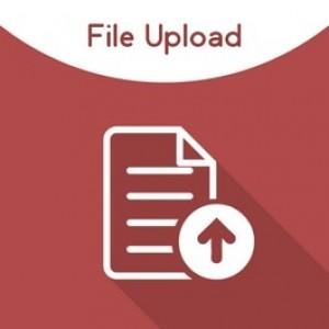Magento File Upload