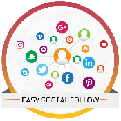 Easy Social Follow WordPress Plugin