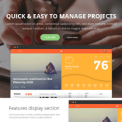 Tech Pro – Responsive template for IT Services and other Business